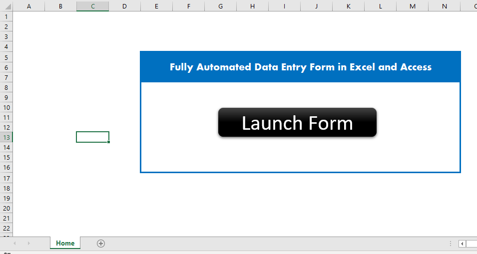 Data Entry Application - Home Sheet